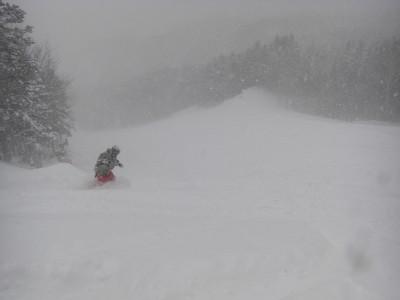 ゴールドコースの新雪