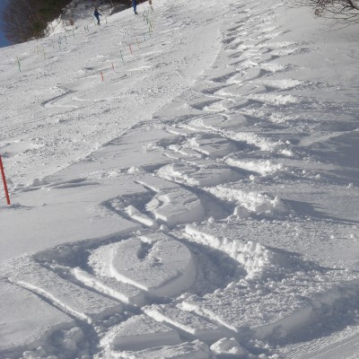 コースサイドの新雪