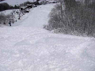 コースサイドの新雪をいただく