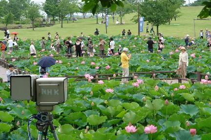NHK固定カメラ
