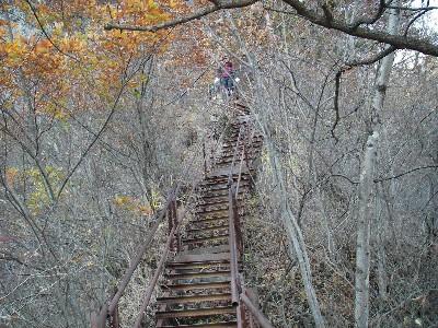 岩尾根上の階段