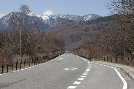 戦場ヶ原を走る道路