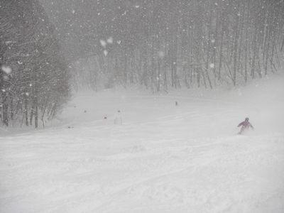 たかねで新雪を滑る