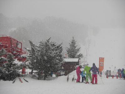 雪、本降り