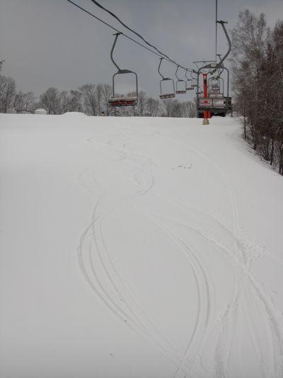 新雪5cm