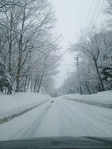 素敵な雪道