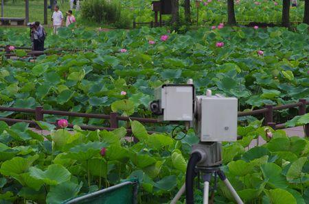 NHKカメラアングル