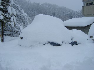 雪下ろしが大変そうだ・・・