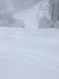 もさもさの深雪